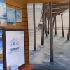 Sandy Bay Gallery
